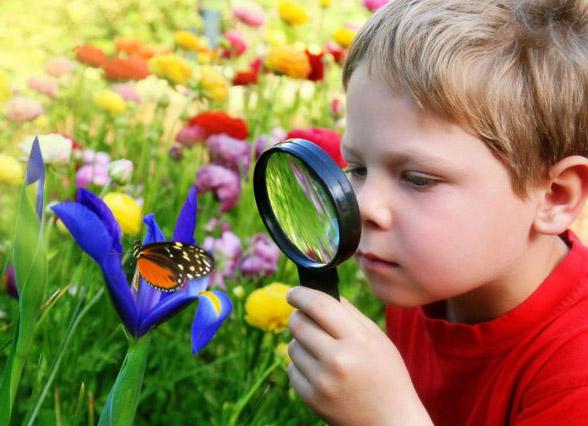 Изучение природы развивает память