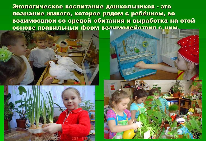 классный час трудовое экономическое и экологическое воспитание Москве, нужно было