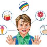 Восприятие дошкольников: особенности развития и диагностика