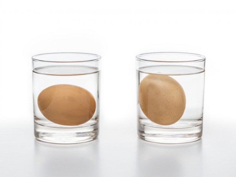 Опыт на плотность воды с яйцом