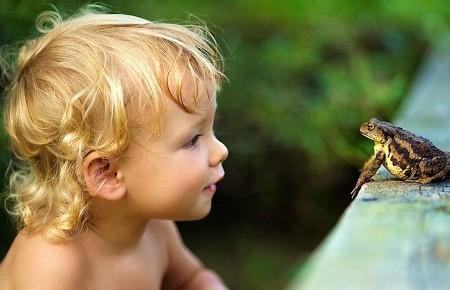 Любопытство у детей к окружающему миру