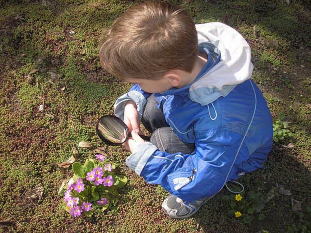 Любопытство у ребенка - желание узнать