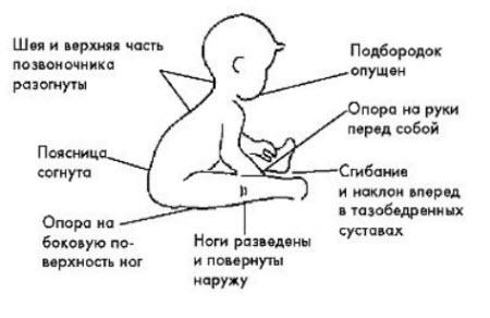 Положение тела при сидении