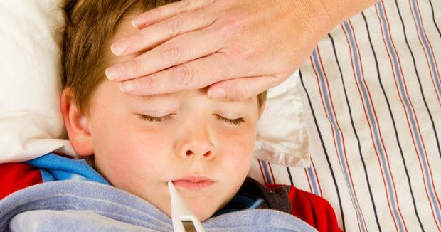 Болезни огурцов и их лечение народными средствами
