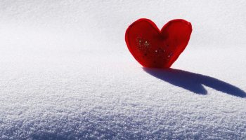 Как школьник из Великобритании романтично поздравил сверстниц