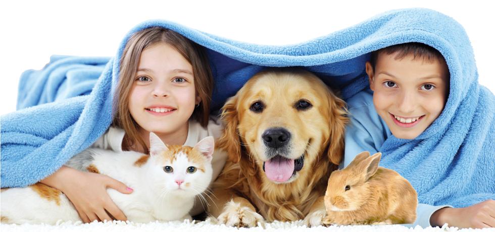 Как выбрать домашнее животное для ребенка