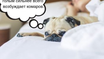 Врачи: «Спите без одежды»