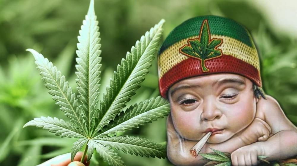 Картинки марихуаной новые с на изображения футболках конопли