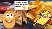 Специалисты Роскачества выяснили, почему чипсы и картофель фри опасны