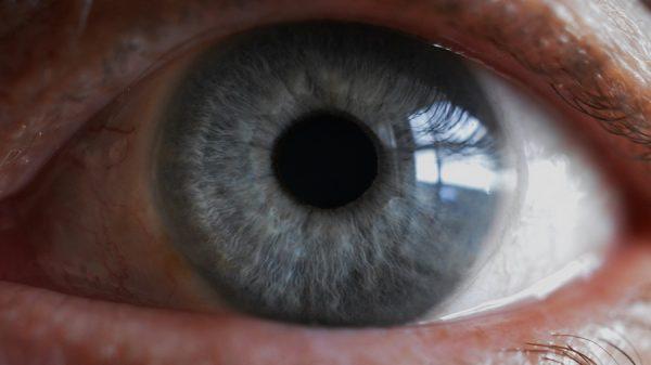 Британский подросток ослеп из-за фастфуда - совпадение ли?