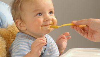 Курица или индейка: что полезнее для ребенка – отвечает Росконтроль