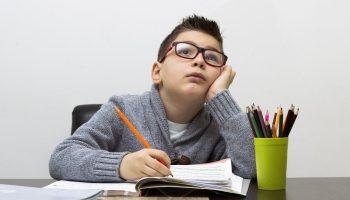 Решебник по aлгебре за 8 класс — поможет или нет