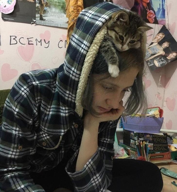 Самоизоляция с котом: все очень серьезно 😉 и как пережить 🤭