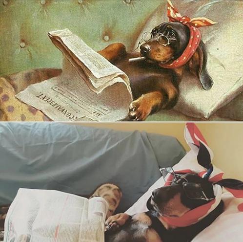 """Карл Райхерт. """"Портрет моей собаки"""""""