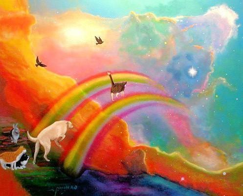 ушли на радугу