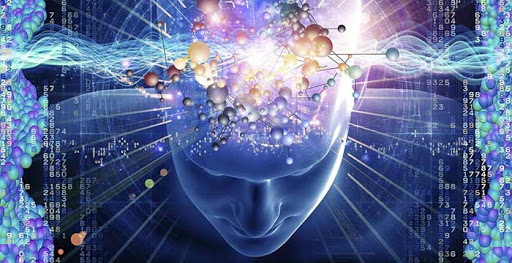 Что такое генетическая память и какую роль она играет в судьбе