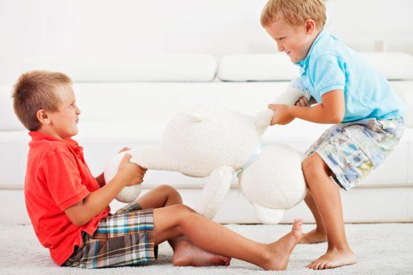Мальчики дерутся за мишку