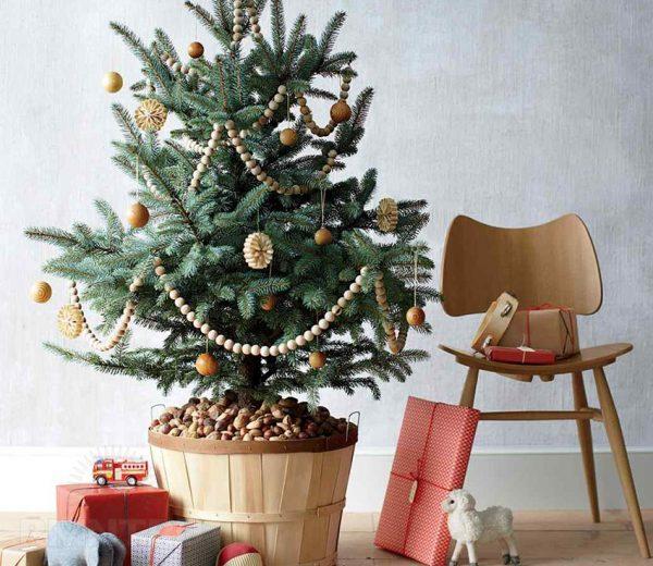 Новогодняя елка в кадке