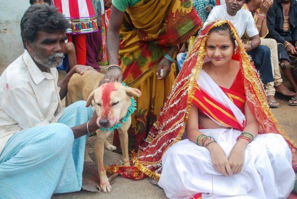 Мангли Мунда и бездомная собака
