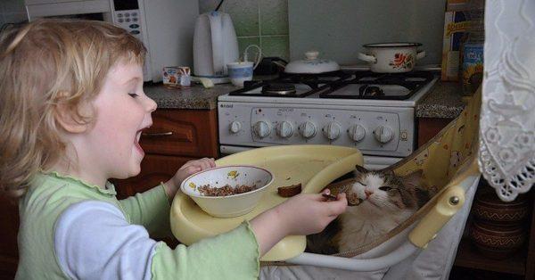 ребенок кормит кота