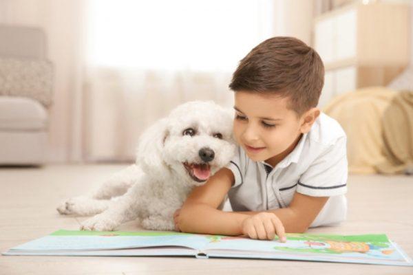 Ребенок и домашние животные: плюсы и минусы
