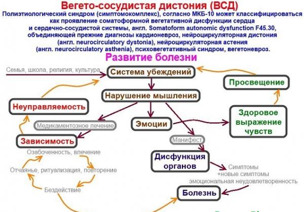 Механизм развития вегетососудистой дистонии
