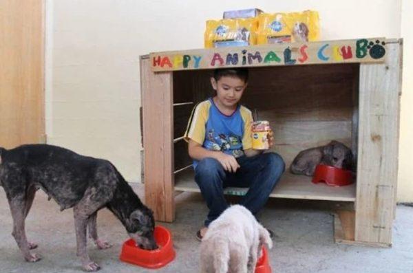 9-летний мальчик устроил приют для бездомных животных в гараже своего дома