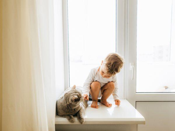 Ребёнок с котом сидят на подоконнике