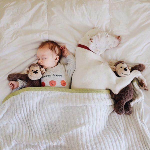 Ребенок спит с питомцем
