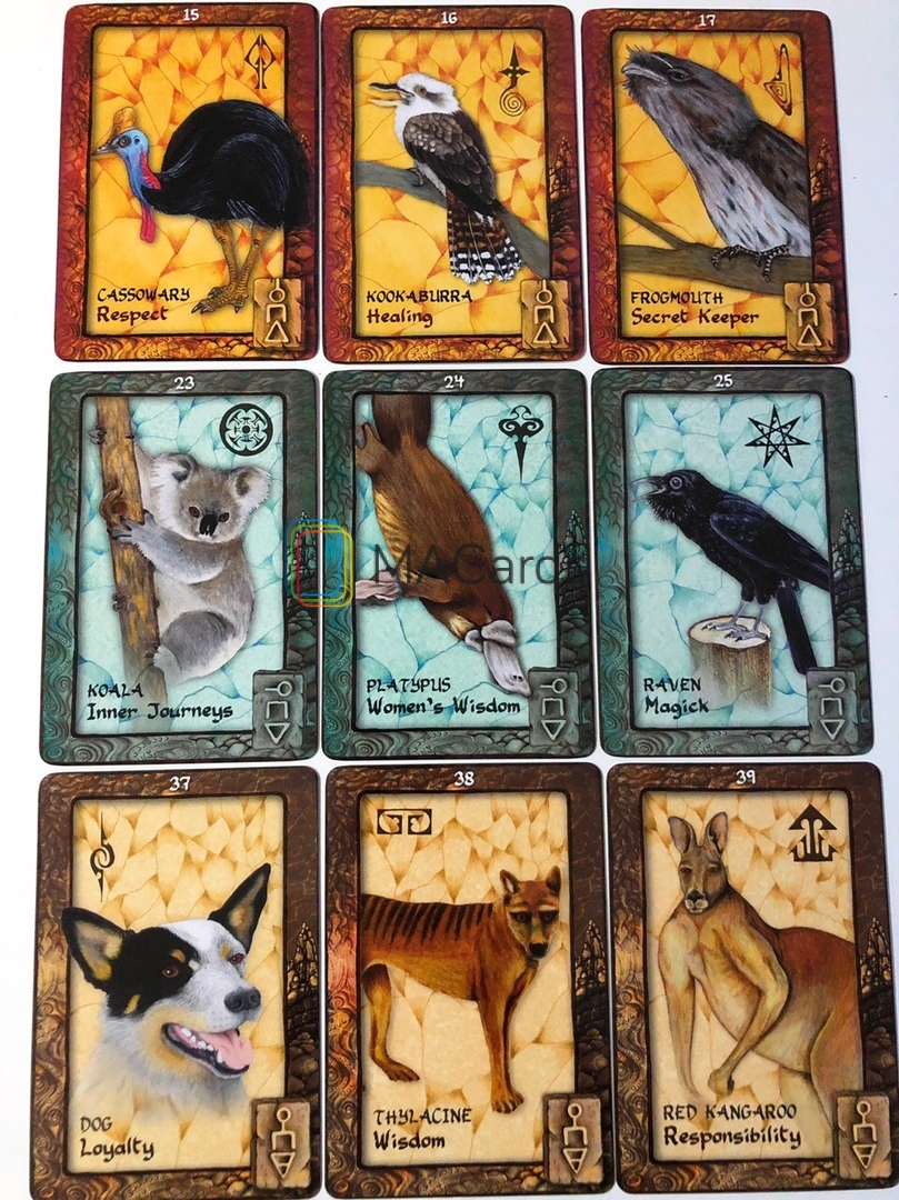 Metaphorical cards with animals