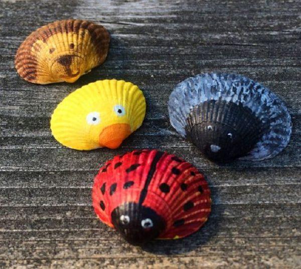 Shell animals