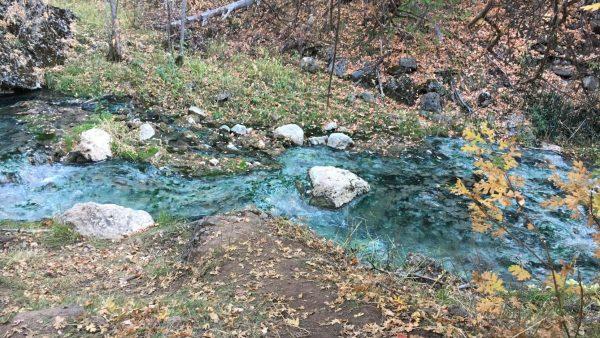 Речка, из которой женщина брала воду