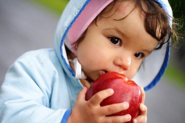 baby eat an apple
