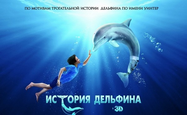 boy with dolphin