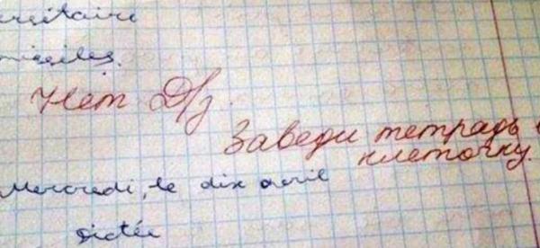 Отдельный жанр литературы - замечания учителей в школьных дневниках