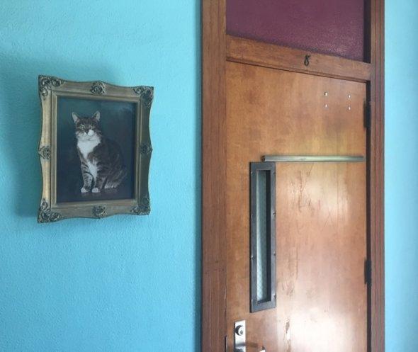 кот восемь портрет