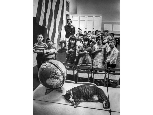 Ученики с котом Восемь