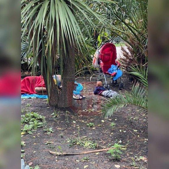 В Сочи 10-месячный ребенок ползал рядом со спящей в кустах матерью. Младенец два дня был в одном памперсе