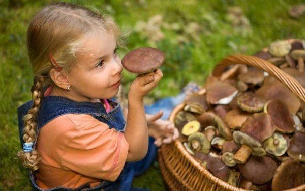 дети и грибы