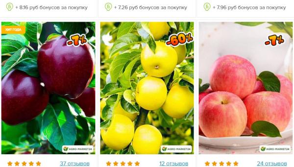 Современные яблони