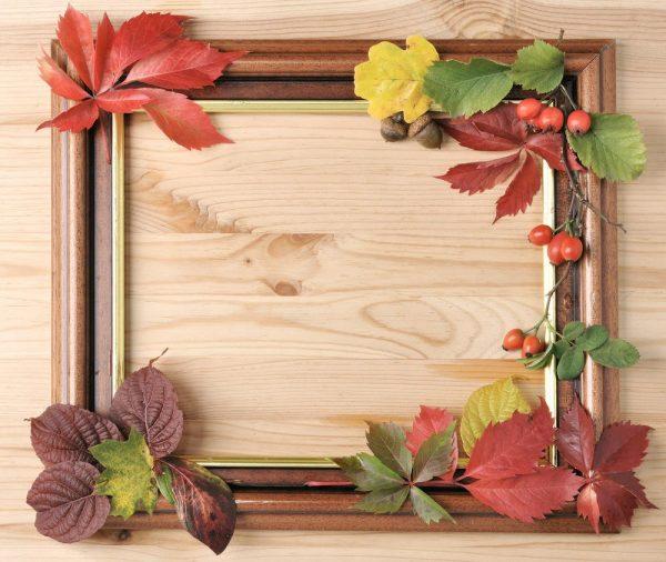 Фоторамки из осенних листьев