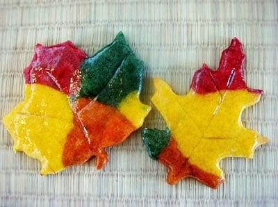Лакированные листья