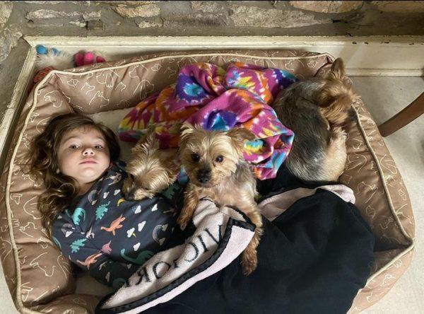 Юные принцессы и их терпеливые питомцы: самая милая и забавная фотоподборка